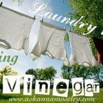 5 Great uses for adding vinegar to laundry