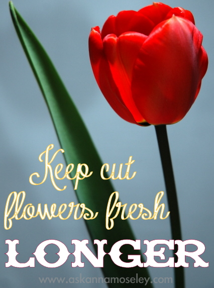 There are so many ways to use vinegar, including extending the life of cut flower, getting rid of deer & more   Ask Anna