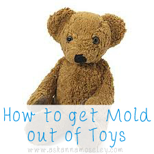 How to get mold out of toys