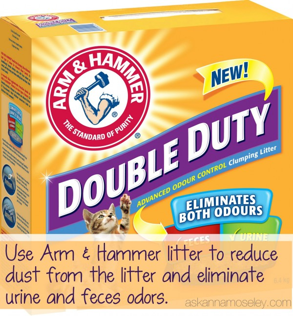 Double Duty litter eliminates dust and smell