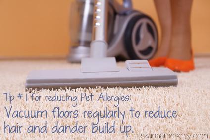 Vacuuming carpet to prevent cat allergies - Ask Anna