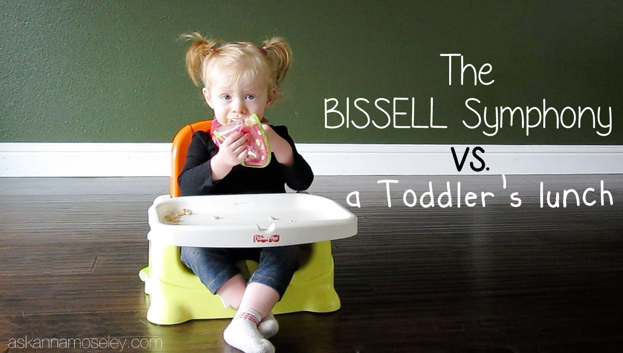 BISSELL Symphony Review - Ask Anna