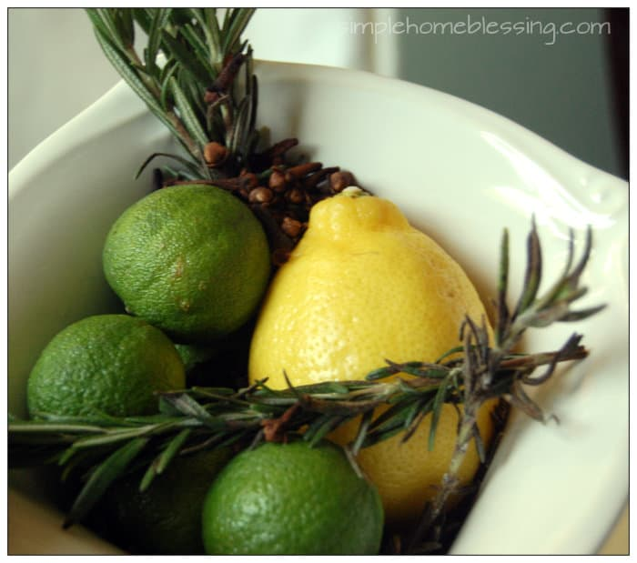 Winter-into-Spring-DIY-Home-Scent