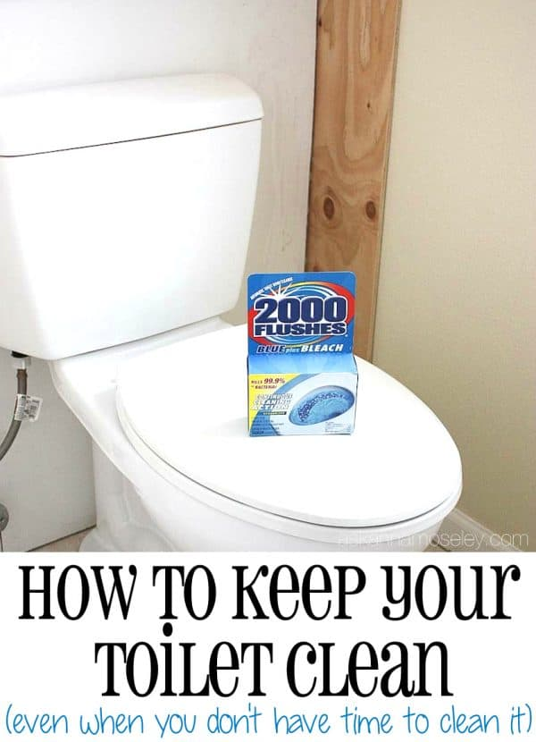 An easy toilet cleaning solution for when you don't have time to clean - Ask Anna
