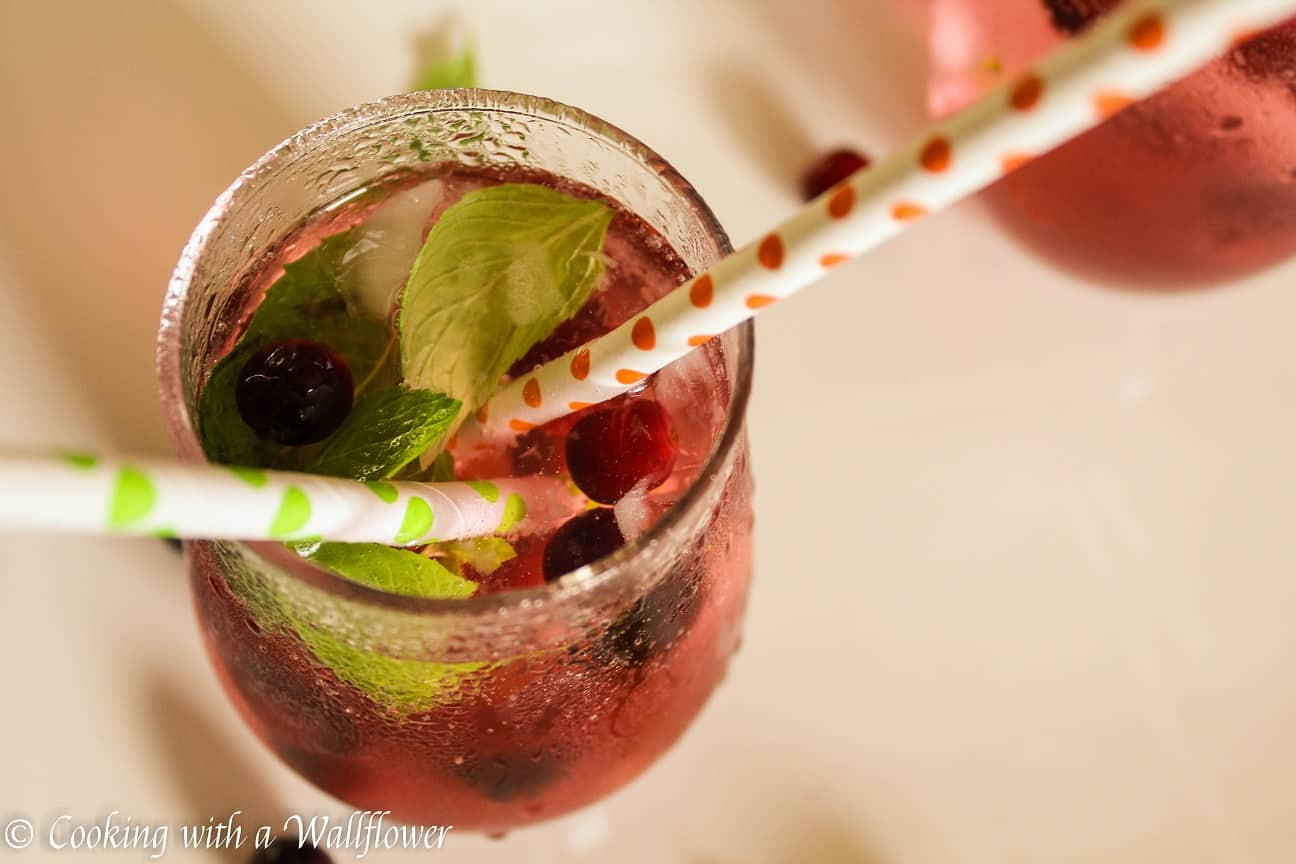 Cranberry mint lime sparkling water recipe