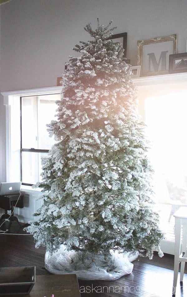 How to prevent your Christmas tree from making a mess and dropping needles all over the floor - Ask Anna