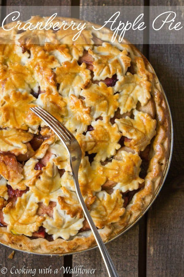 Slightly sweetened apple and cranberry pie with the warm flavors of cinnamon, nutmeg, and brown sugar. This cranberry apple pie is the perfect dessert to transition from fall to winter.