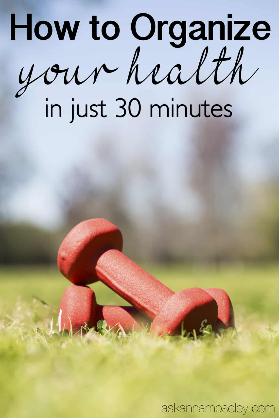 How to organize your health in 30 minutes, and change your life forever   Ask Anna