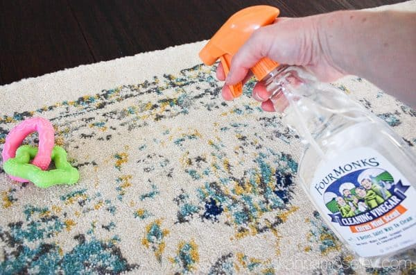 Cleaning tips for new puppy owners, using vinegar | Ask Anna