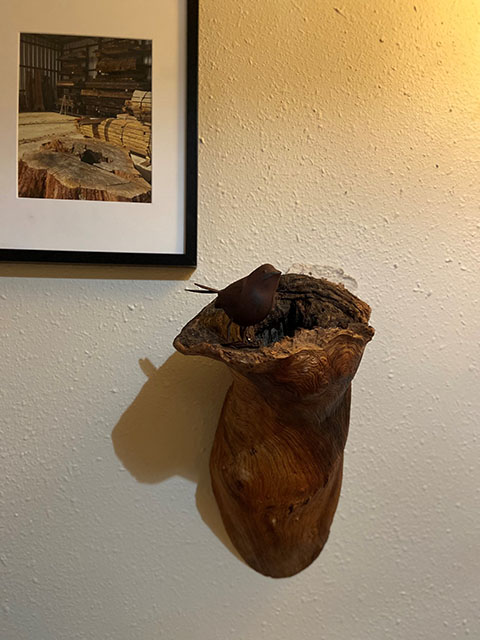 Wall mount wood burl, w bird