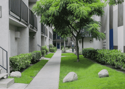Pathway with grass and trees between apartments