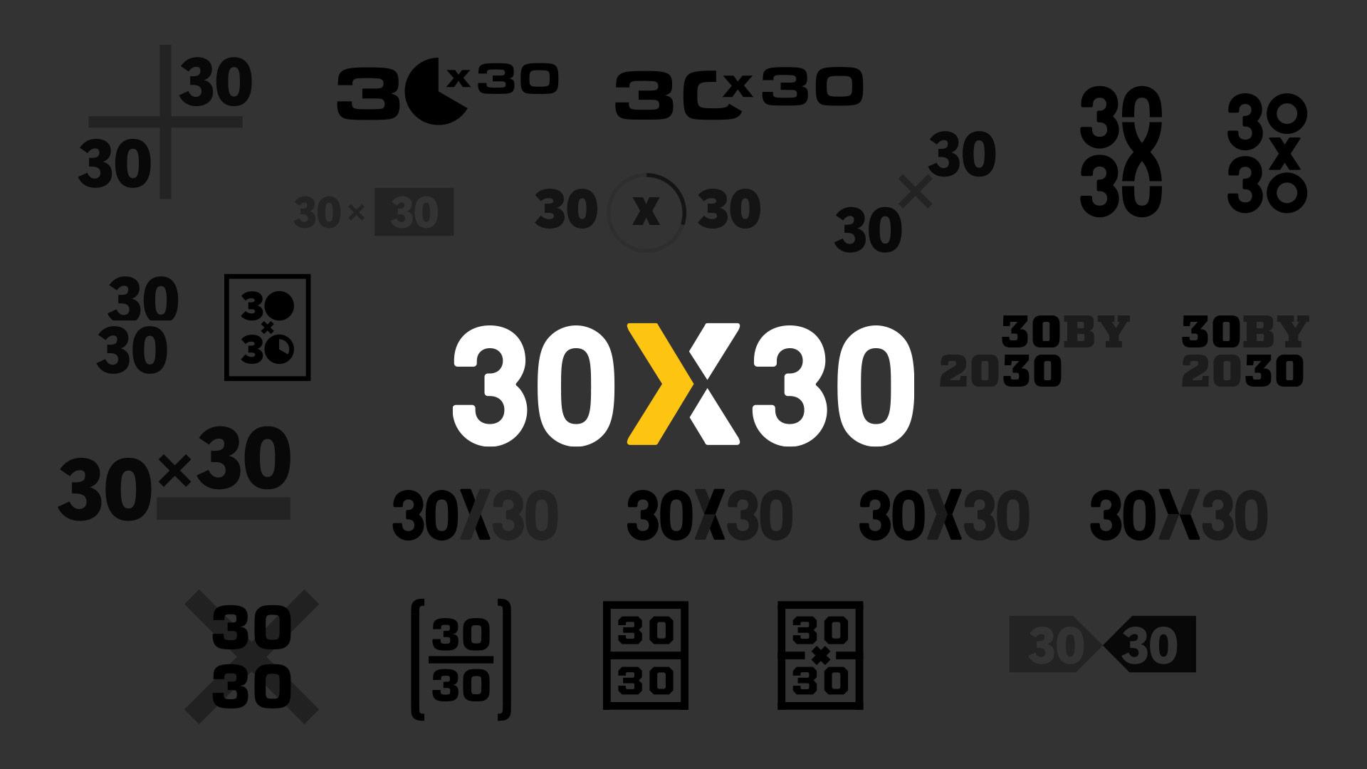 30×30-logo-design