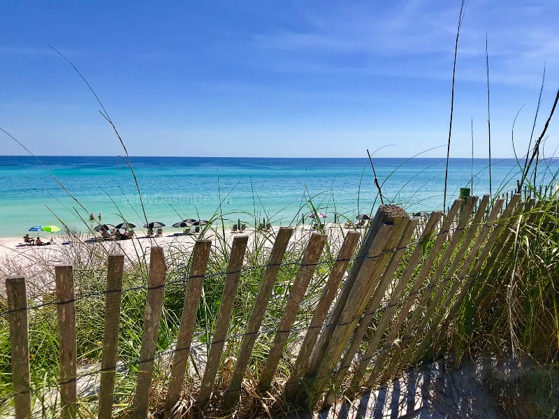 when to visit destin, fence overlooking the beach