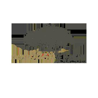 OneWorld Health   partners--commonWealth