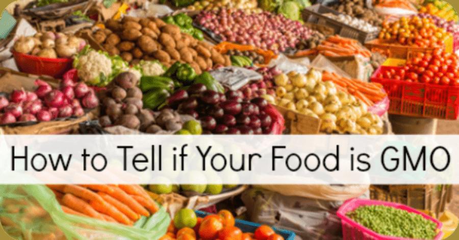 GMO Foods List