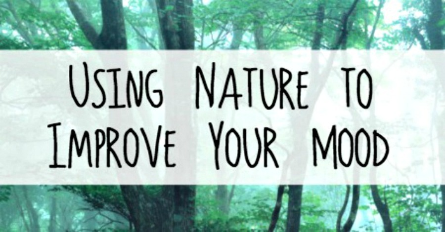 Using the Benefits of Nature to Improve Your Mood