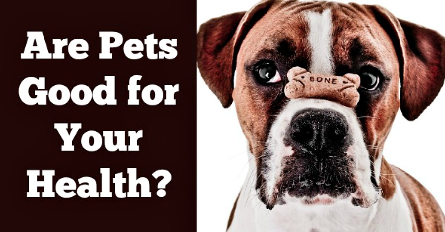 Are Pets Good for Your Health?