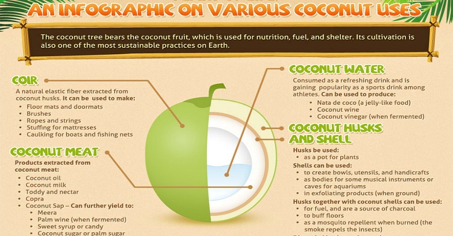 The Many Uses of Coconut - https://healthpositiveinfo.com/the-many-uses-of-coconut.html