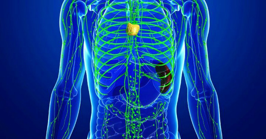 How to Drain Your Lymphatic System and Why It's Important - https://healthpositiveinfo.com/how-to-drain-lymph-system-important.html