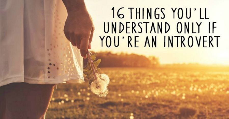 16 Things You'll Understand Only if You're an Introvert - https://healthpositiveinfo.com/things-youll-understand-only-if-youre-an-introvert.html