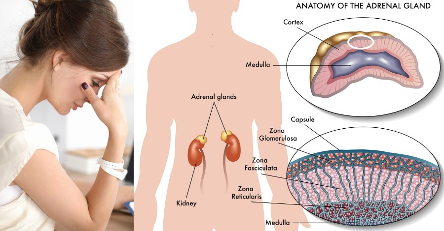 12 Steps to Heal Adrenal Fatigue Naturally