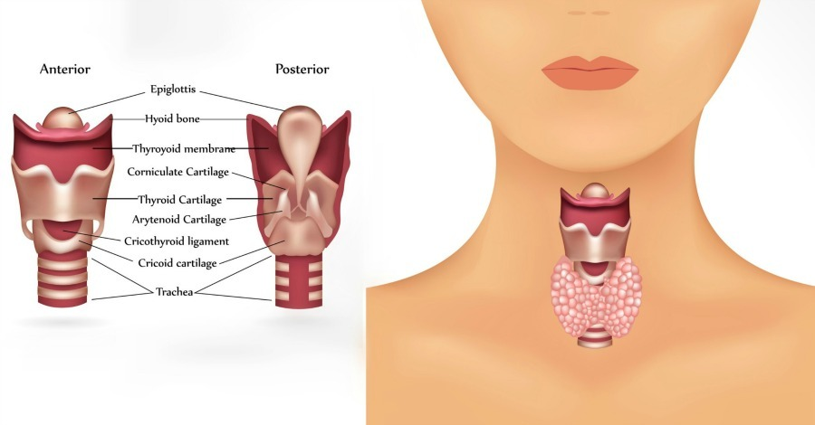 9 Signs You Have an Underactive Thyroid