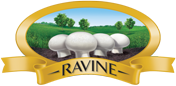 Ravine Mushrooms