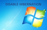 Disable Hibernation