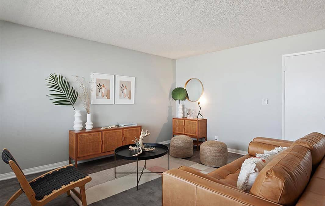 Modern white and brown theme of living room