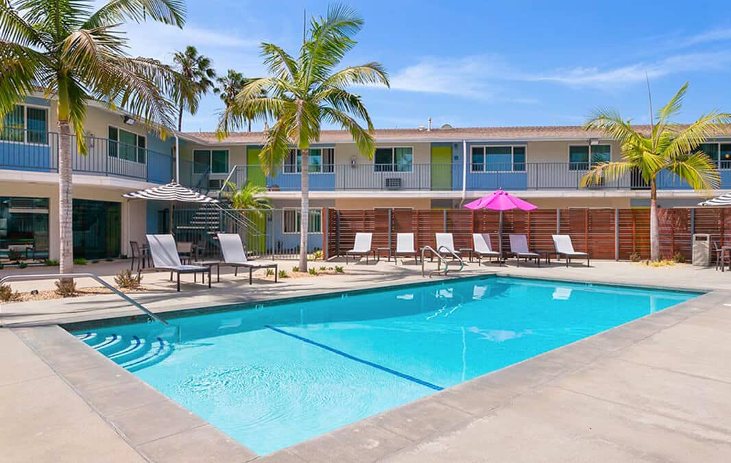 pool with palm trees and chairs