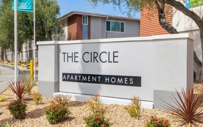 Read What The Circle Does to Support a Sustainable Lifestyle