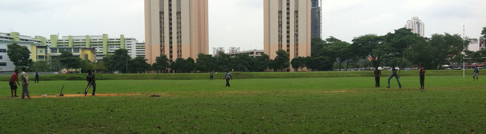 cricket-little-india