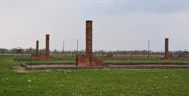 The remains of old wooden barracks at Birkenau.