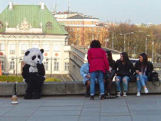 sad-panda-warsaw