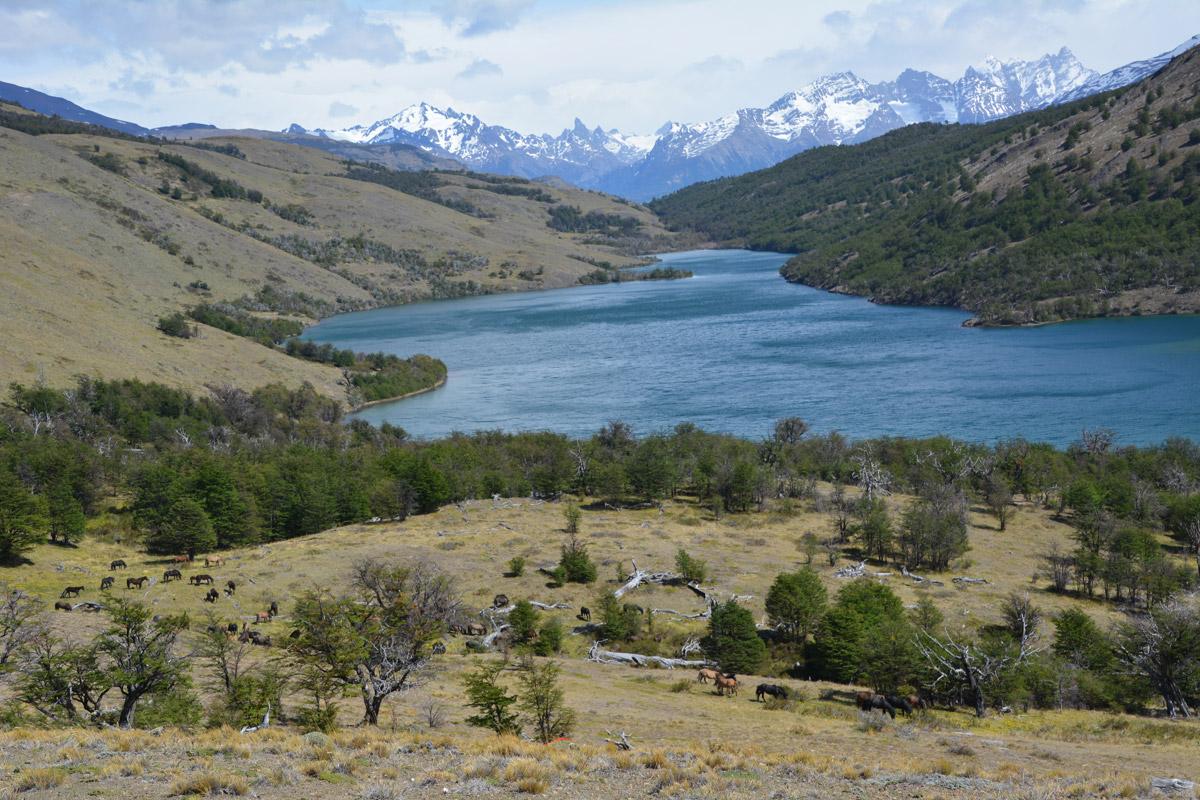 horse-trek-lake