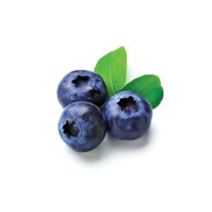 Blueberry-fruit-34733313-600-600
