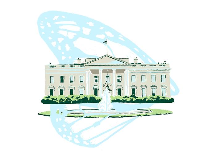 Illustration of White House