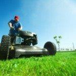 Grass Cutting 207 Lawn