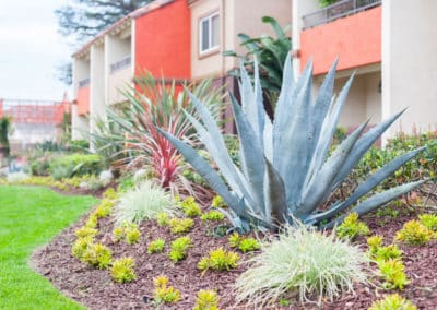Landscaping of apartments