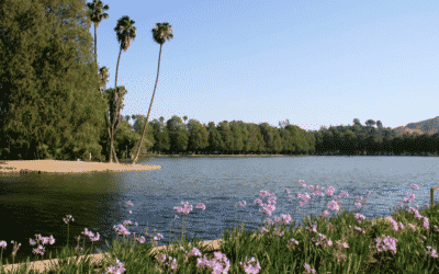 Best Hikes in Fountain Valley, California