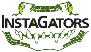 The Insta-Gators Logo