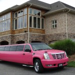 Carolina Luxury Transportation Group pink limo at Shadow Springs for an NC Winery Tour