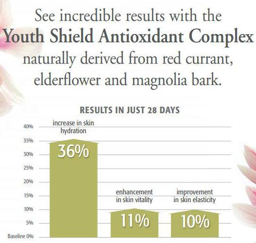 Youth Shield Chart