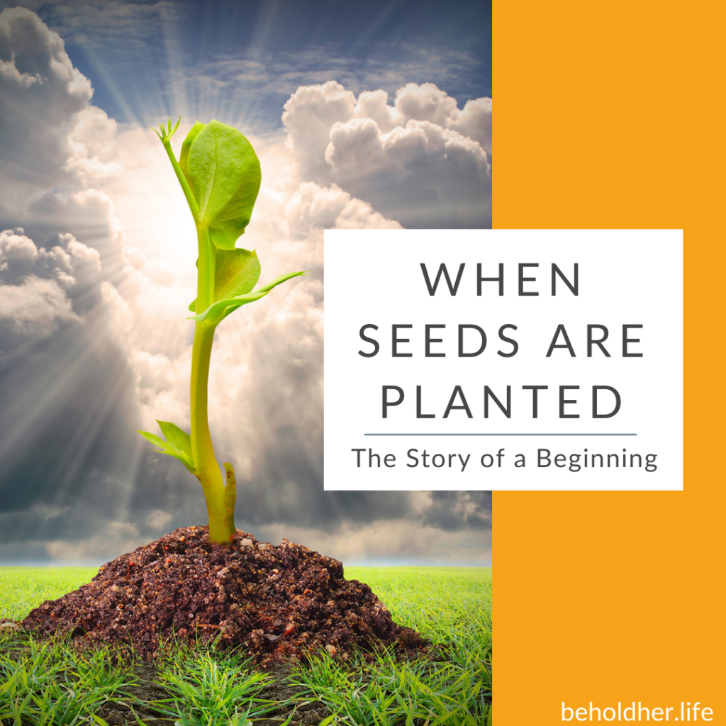 When Seeds Are Planted - The Story of a Beginning