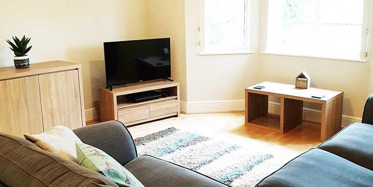 living-room-opt