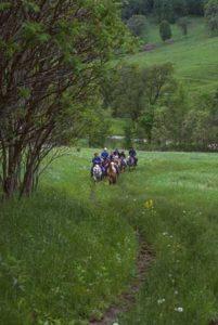 horseback riding in the driftless