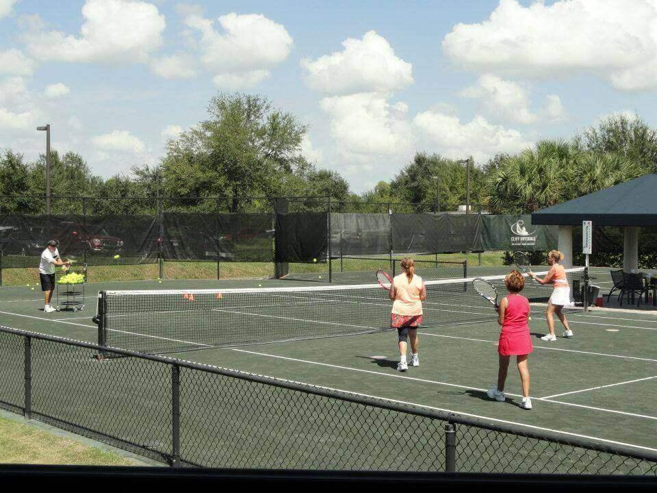 Traveling Tennis Pros - 3.5 - 4.0 Ladies Clinic - Artisan Lakes - Palmetto