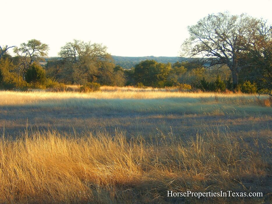 Texas-Hill-Country1