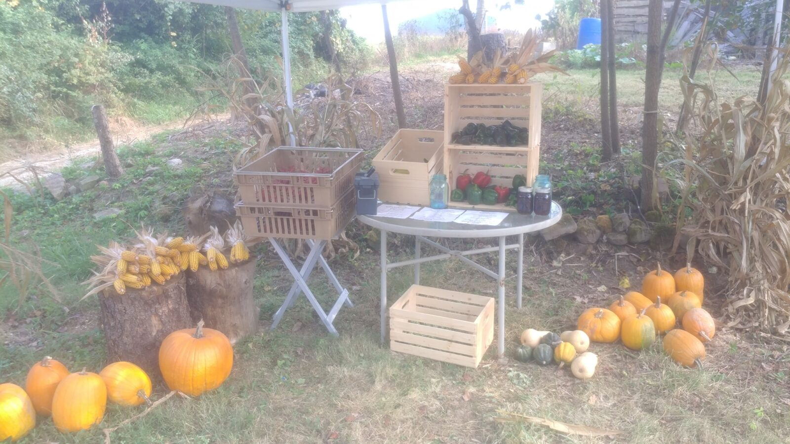 The Farm Stand at Christopher Farms.