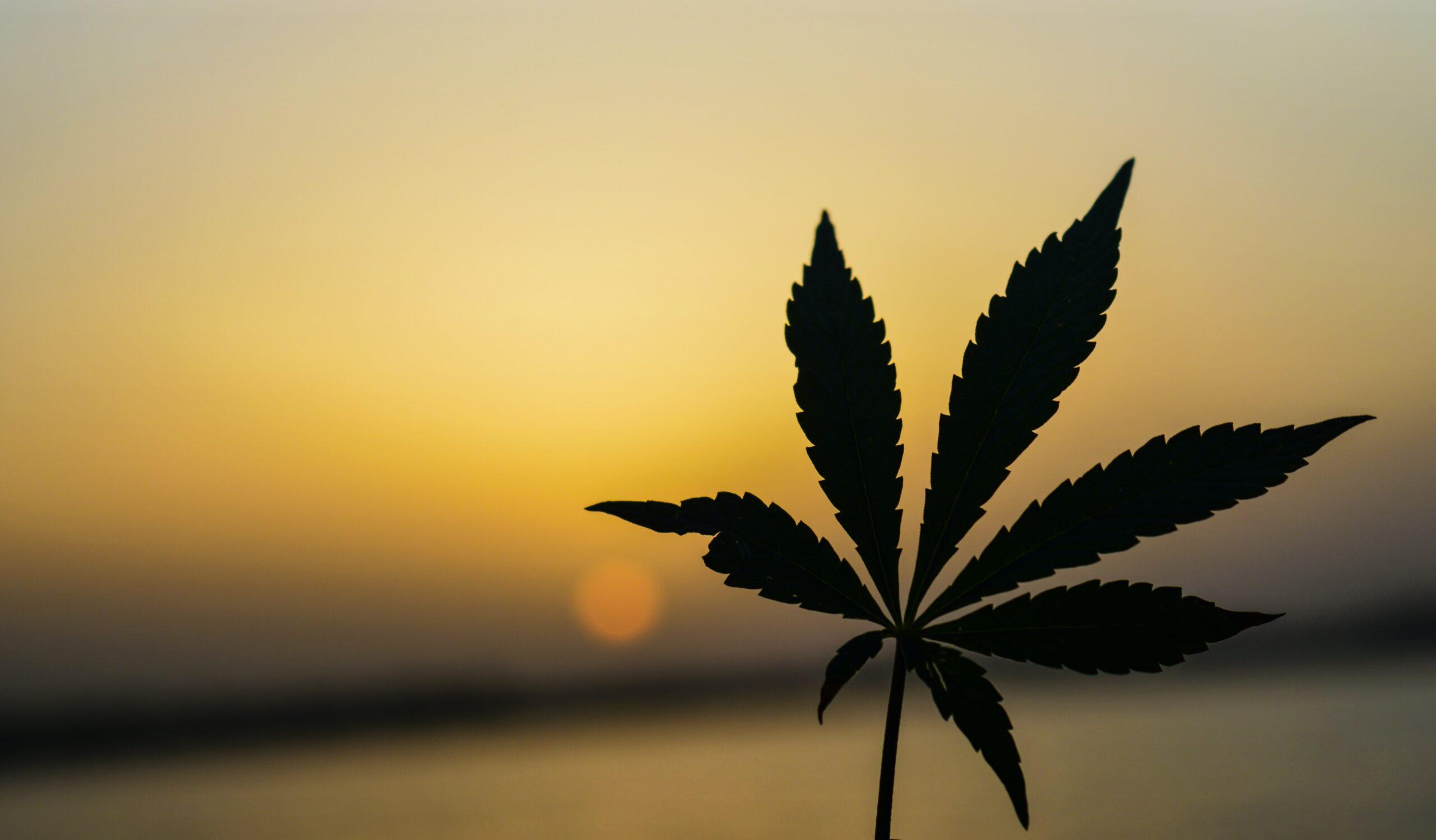 recreational marijuana az